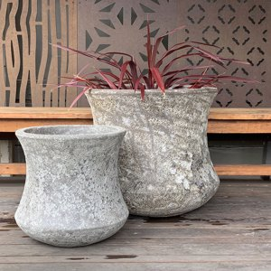 Ancient Lotus  Pot